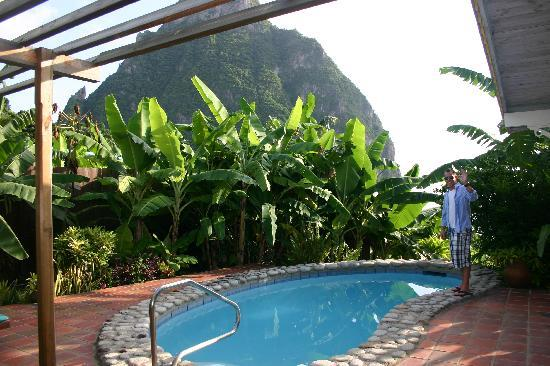Stonefield Villa Resort: Plunge pool and view
