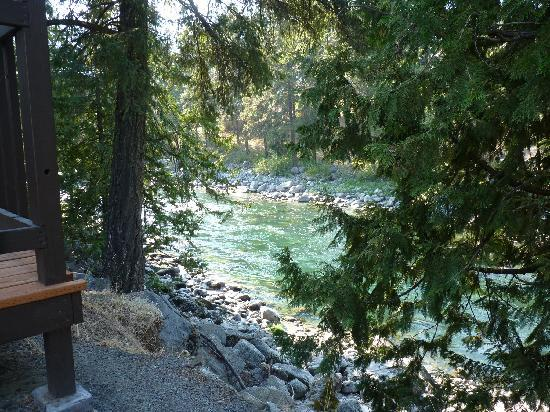 Bindlestiff's Riverside Cabins: Wenatchee river behind cabin #1.
