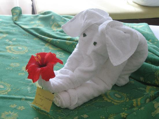 Iberostar Ensenachos: An example of daily housekeeping creations