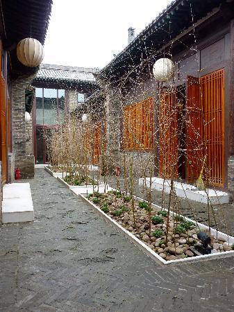 Jing's Residence: Courtyard Detail