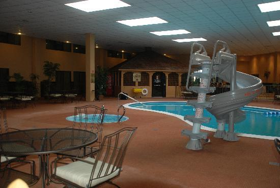 The pool area picture of clarion inn garden city garden for Garden city pool 11530