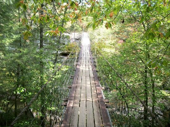 Fall Creek Falls State Park: suspension bridge over piney falls