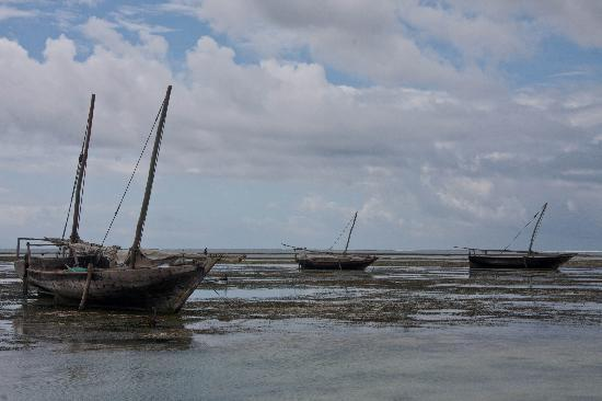 Mnarani Beach Cottages: Dhow Shipyard