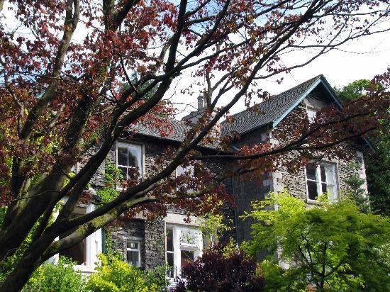 Annesdale House: The magic maple