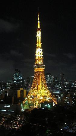 โรงแรมเดอะปรินท์ พาร์ค โตเกียว: 2日目の東京タワー