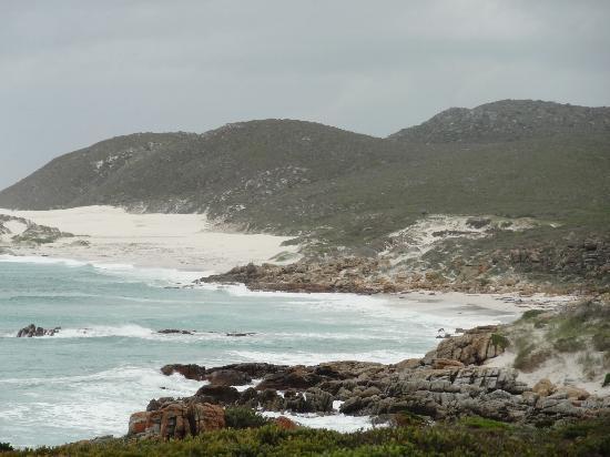Cape of Good Hope: Hills/Ocean