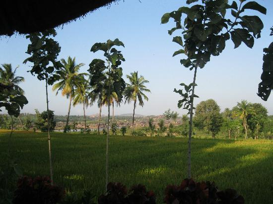 Shanthi Guesthouse: view from cottage