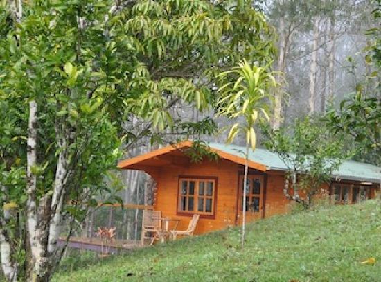 瓦寧山渡假民宿照片
