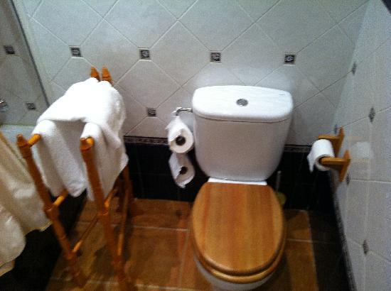 Posada La Cotia: baño impecable
