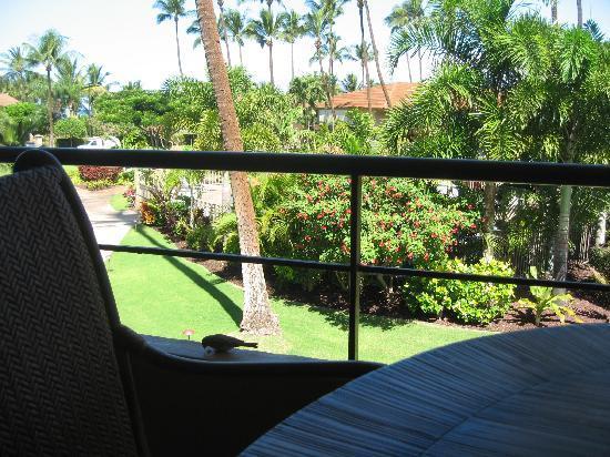 Aston Maui Kaanapali Villas: view from lanai