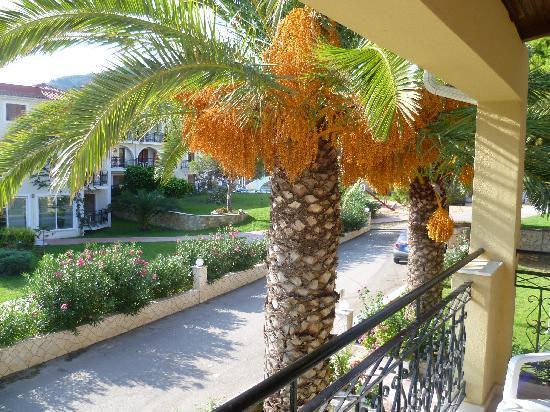 Katerina Palace Hotel: View from the Balcony