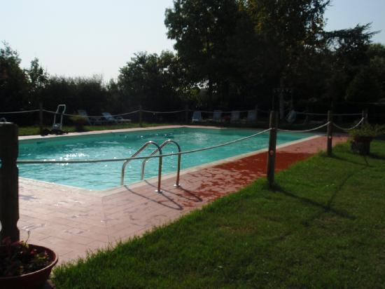 Airone Pisa Park Hotel: pool