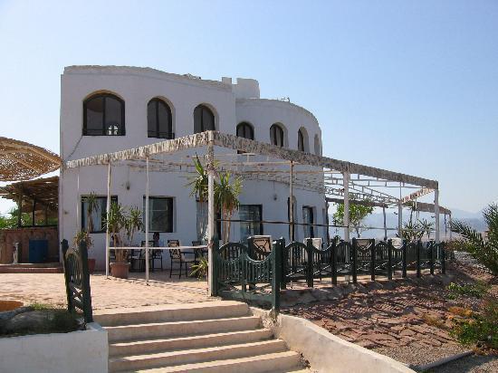 Halomy Hotel: Halomy - bar area