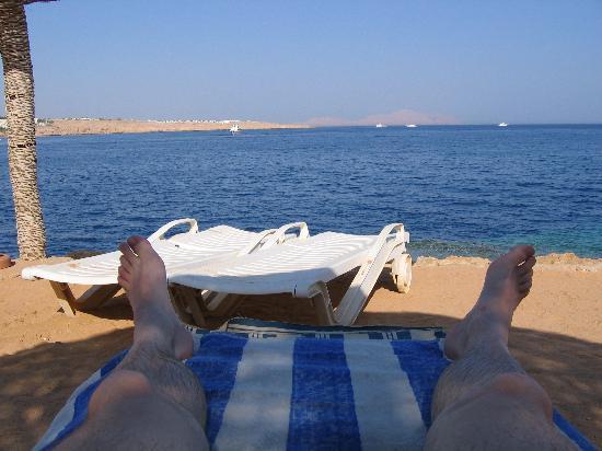 Halomy Hotel: Halomy - view from the beach!