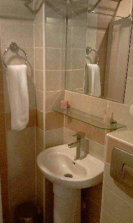 Turvan Hotel: Bathroom 1