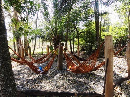 Estancia Mimosa Ecoturismo: redario