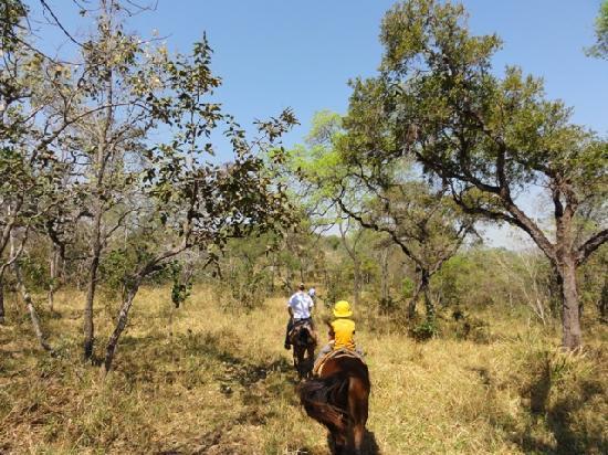 Estancia Mimosa Ecoturismo: horse riding