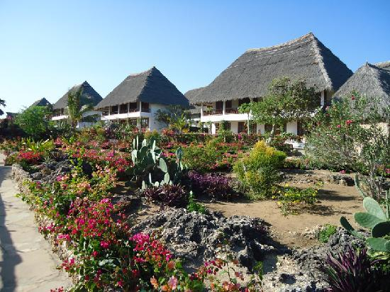 Jacaranda Beach Resort: alcune camere