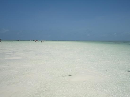 Jacaranda Beach Resort: l'oceano