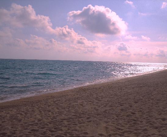 Golden Taurus Aquapark Resort: beach