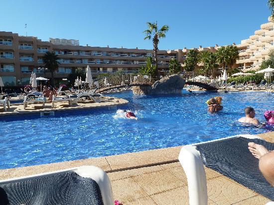 Tropic Garden Aparthotel: The hotel pool
