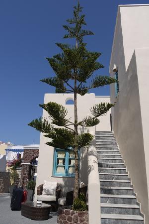 Evgenia Villas & Suites: Reception area