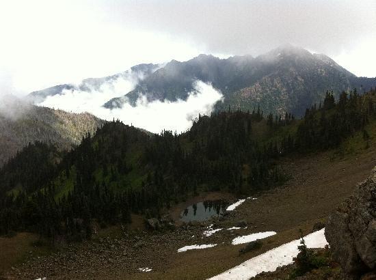 Hurricane Ridge: Mount Angeles