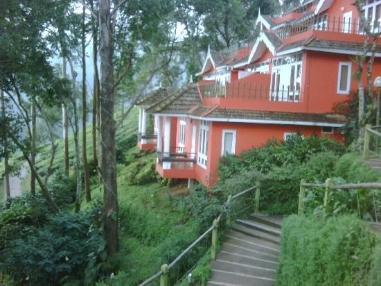Tea Valley Resort: Resort ambience