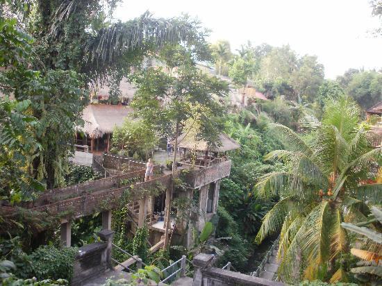 อูบุด, อินโดนีเซีย: due passi nella foresta