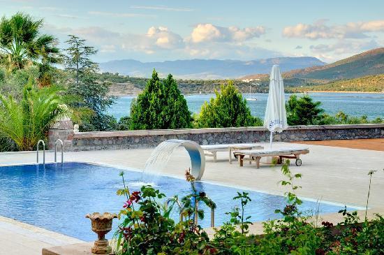 Kalem Adasi Oliviera Resort: Swimming Pool