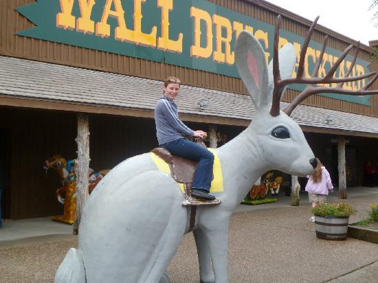 Wall Drug: whats this?