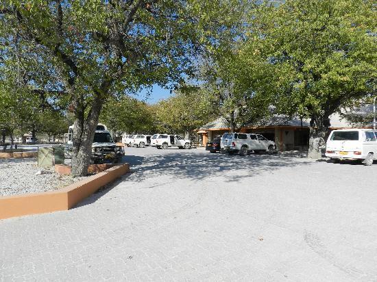 Halali Resort: Camp