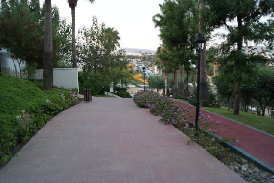 WOW Bodrum Resort: Gardening - Street