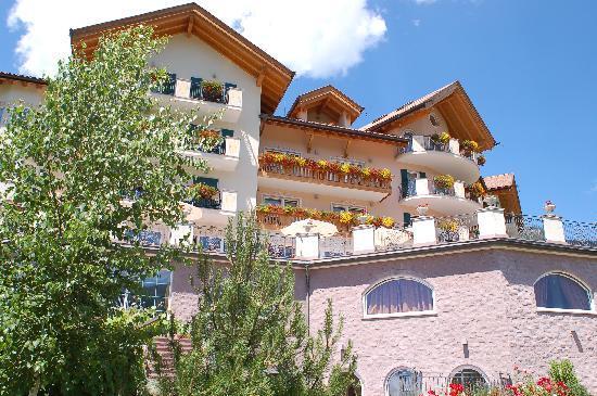 Hotel Lagorai Alpine Resort & Spa: panoramica dal giardino