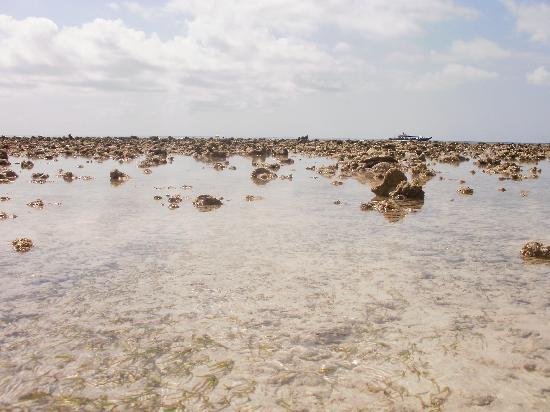 กีลีทราวางกาน, อินโดนีเซีย: Quando arriva la bassa marea!