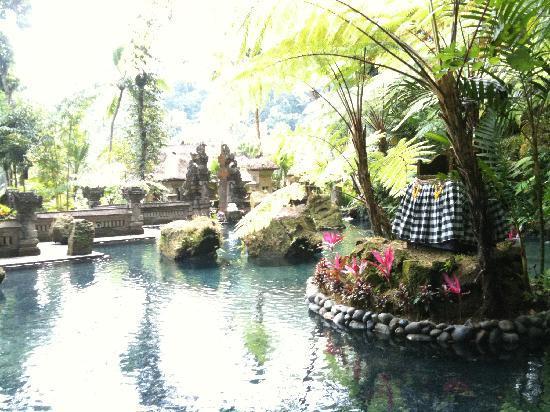 โรงแรมรอยัล ปิตา มาฮา: Holy spring water pool