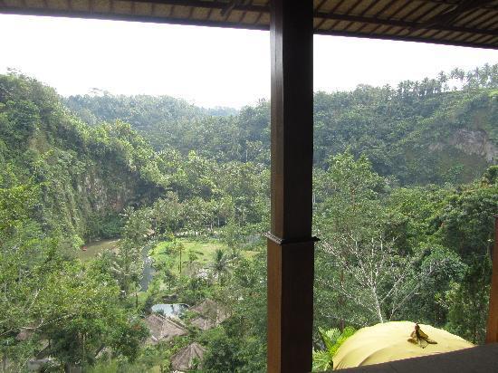 โรงแรมรอยัล ปิตา มาฮา: View from lobby