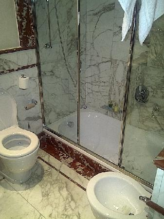 Golden Tower Hotel & Spa: the badroom were you had to step down 1 meter to shower