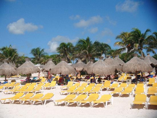 Iberostar Tucan Hotel: the beach