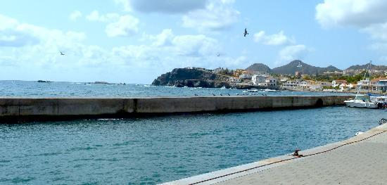 Gulls looking oput to sea at Cabo de Palos