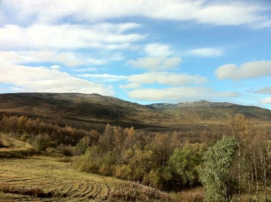 Sånninggården: View