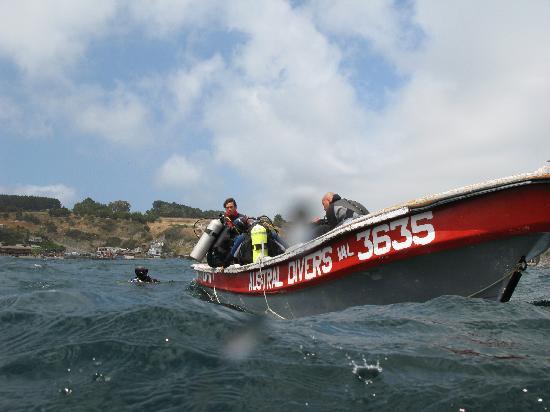 Austral Divers: Bote Australdivers