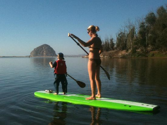 Central Coast Stand Up Paddling: A beautiful day in the Back Bay
