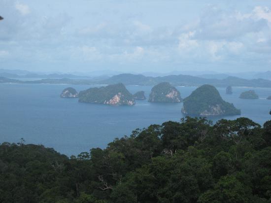 ทับแขกกระบี่บูติค รีสอร์ท: A view from the rainforest walk in the national park behind the hotel