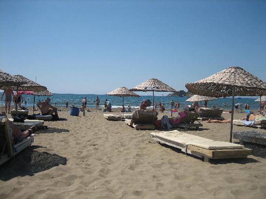 Binlik Hotel: Turtle Beach