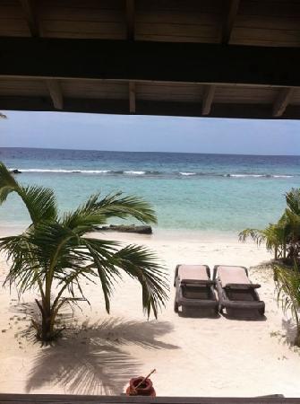 คุรีดุ ไอแลนด์ รีสอร์ท แอนด์ สปา: view from our room
