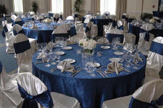 Spartanburg Marriott: Azalea Ballroom