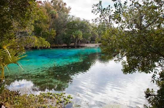 Holiday Inn Express Suites Ocala - Silver Springs: Alexander Springs at Ocala National Forest (few minutes from hotel)