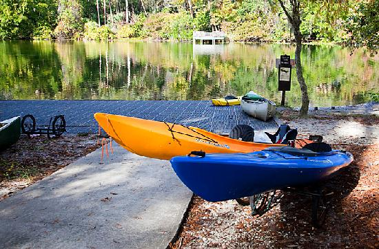 Holiday Inn Express Suites Ocala - Silver Springs: Salt Springs at Ocala National Forest (few minutes from hotel)