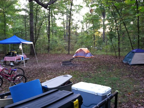 Headquarters Campground: Our spacious, level site. Three tents.